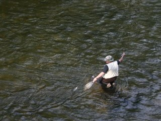 Top States for Trout Fishing