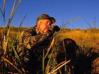 duck-hunter