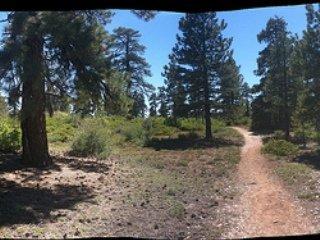 Trails of Zion National Park