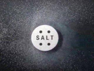 file_167251_0_Salt