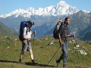 file_166705_0_trekking_poles