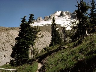 file_166707_0_timberline