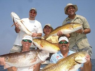 file_166951_0_redfish