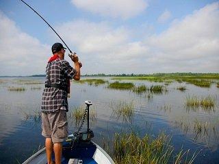 file_168127_0_fishing_grass