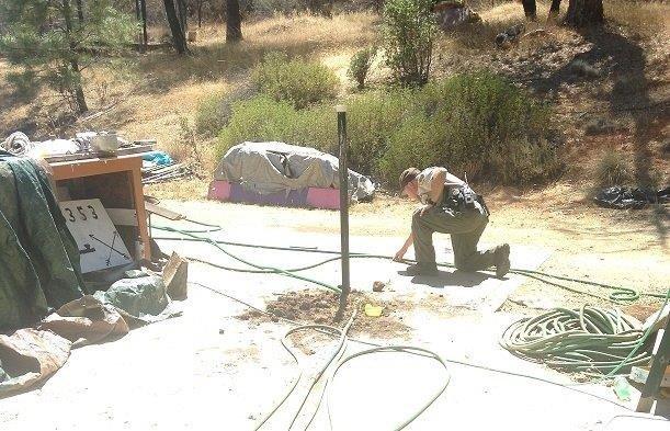 War Veteran Fights Off Black Bear Attack Near Yosemite