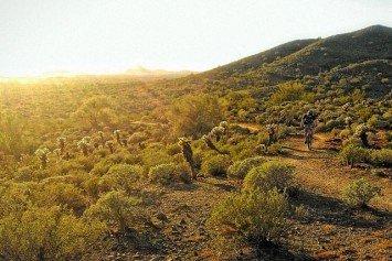 8 Reasons to Mountain Bike Arizona in the Winter