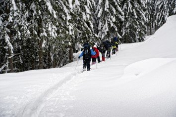 Tips And Techniques To Make Snowshoeing Easier
