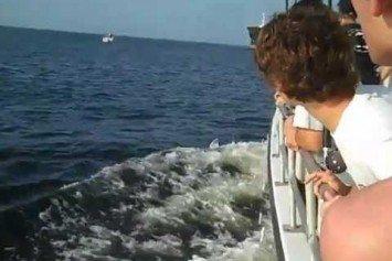 Watch An Oil Tanker Nearly Crush a Sport Boat