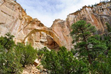 Stunning Destinations in the Land of Enchantment: New Mexico