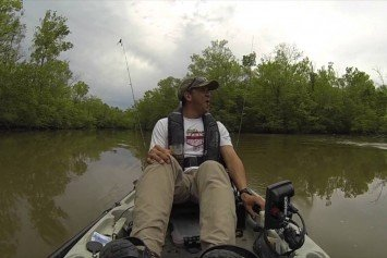 Kayak Angler Encounters Giant Alligator in Louisiana Delta