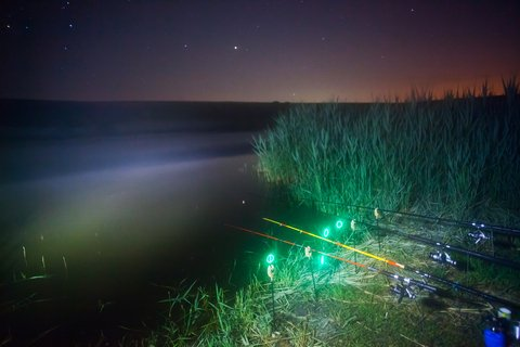 night fishing