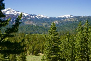 Explore California Gold Rush History on the Heness Pass Road