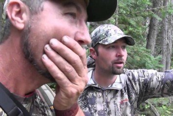 Idaho Elk Hunters Swear They Saw Bigfoot