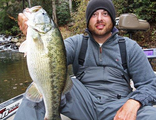 bass big