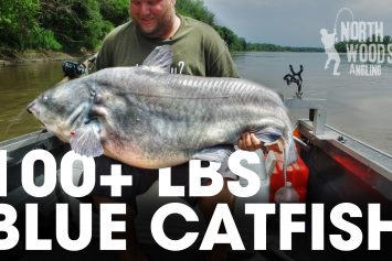 Anglers Land Giant Blue Catfish More Than 100 Pounds