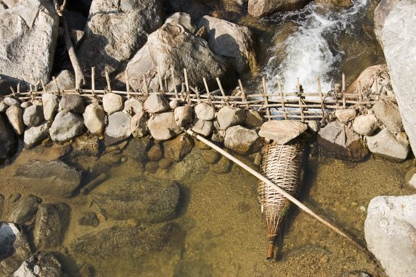 fish dam