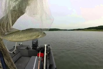 3 Key Strategies for Catching Fall Walleyes