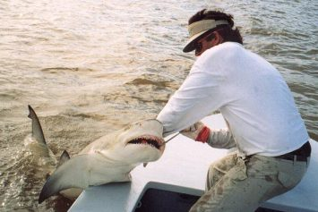 Top 5 Shark Fishing Destinations in America
