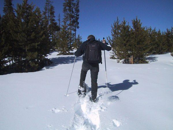 snowshoeing-powder
