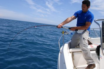 Best Saltwater Fishing Knots in 5 Setups