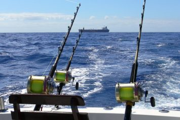 8 Trolling Tips for a Successful Fishing Trip