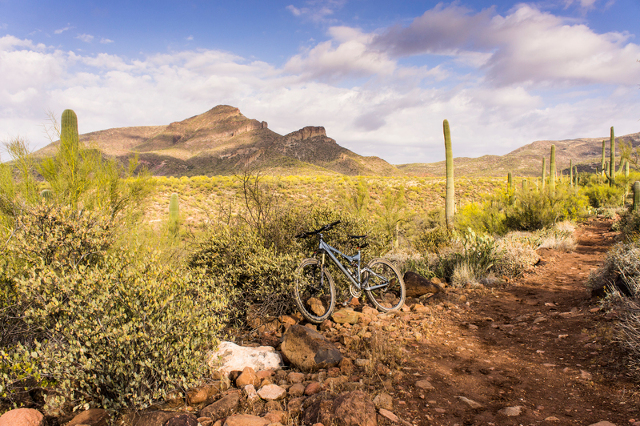 Cave Creek Classic Loop